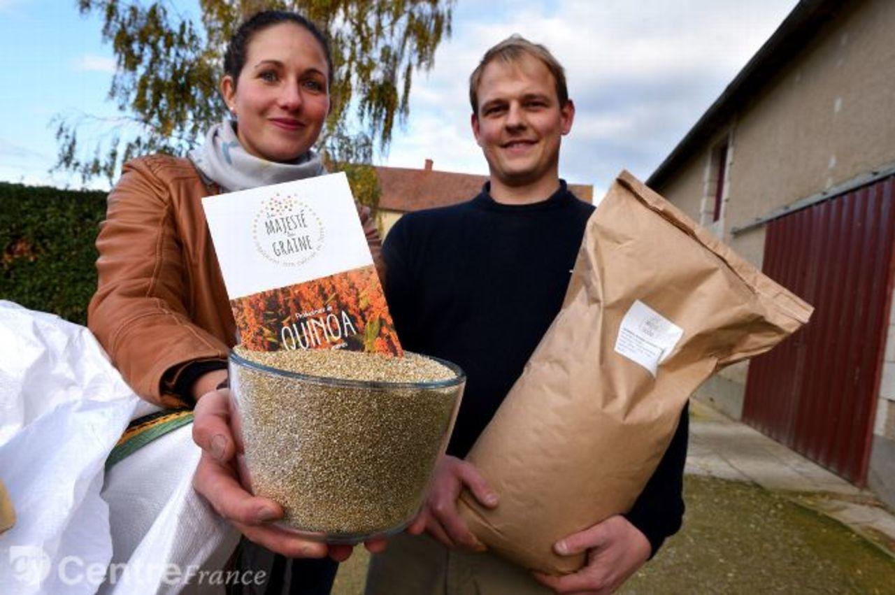 Culture du quinoa 3485275