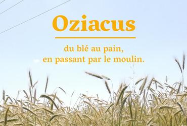 Bann oziacus