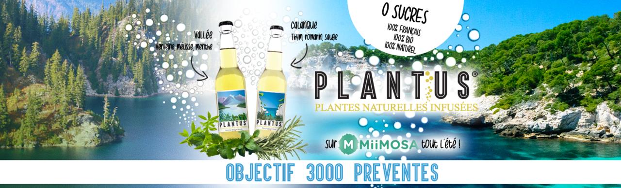 Banniere plantus ete2020 mii 1400x425