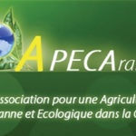 Apeca logo modifie