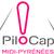 Logo midi pyrenees