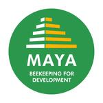 Maya bfd rondvert quadri
