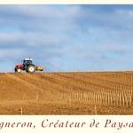 Vigneron cdep plantation