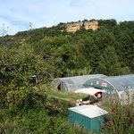 La ferme bioling